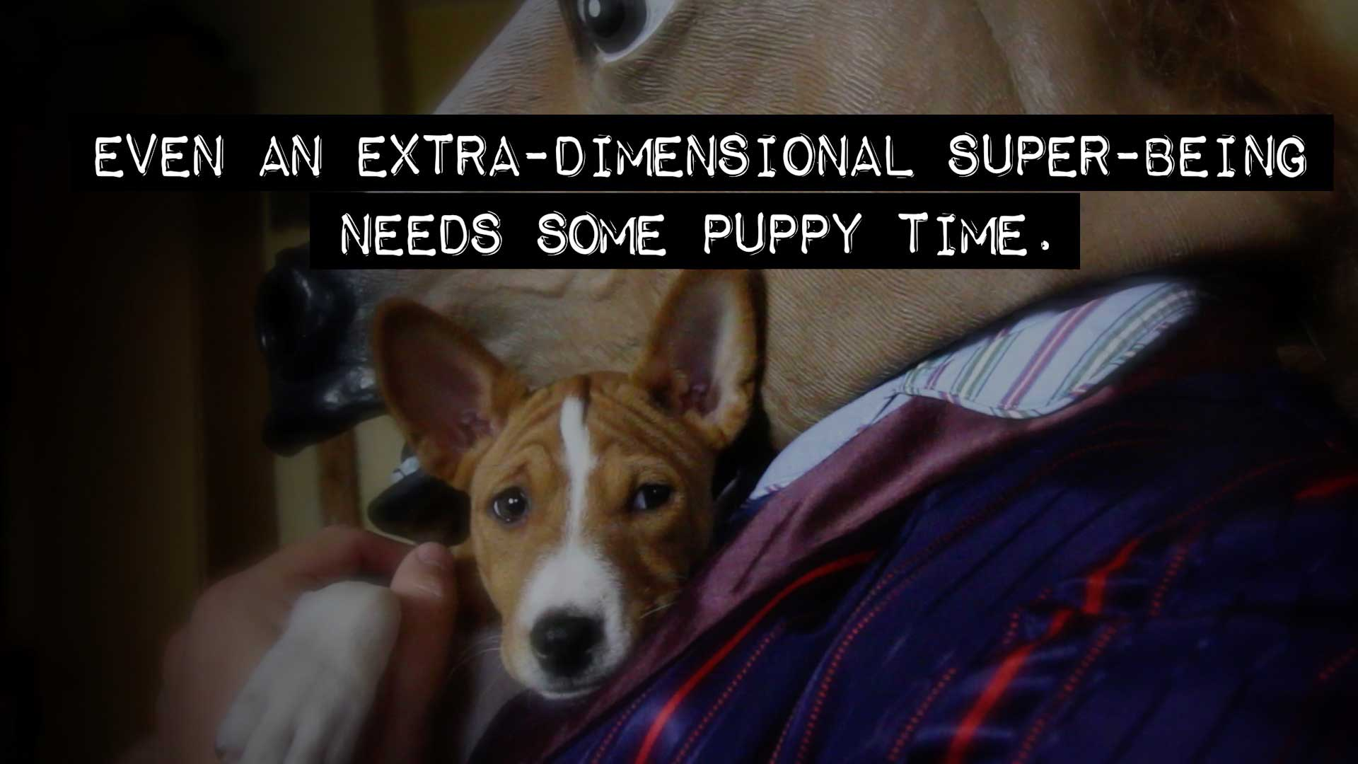 Horse Head holding a puppy. Text: Even an extra-dimensional super-being needs some puppy time.